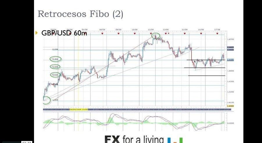 Como operar con fibonacci+forex